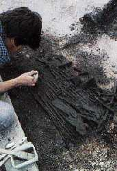Excavation of a mesolithic bow net in Noyen-sur-seine. Ph. Cl D. Mordant.
